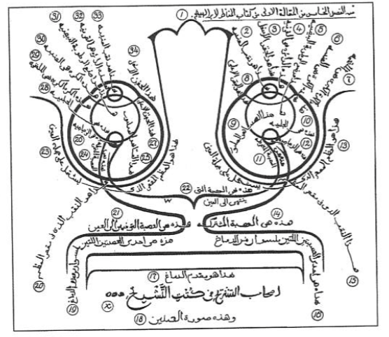 Alhazen (al-Haitham)-Diagram of the Phsiology of the Eye